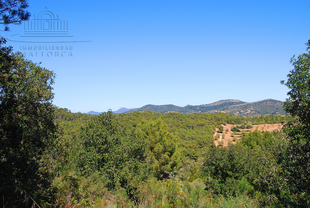 Kaufen Immobilien Finca Mallorca Ostküste, buy real estate Finca majorca east coast